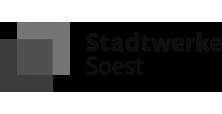//gruenesautohaus.info/wp-content/uploads/2020/02/logo-stadtwerke-schwarz.png