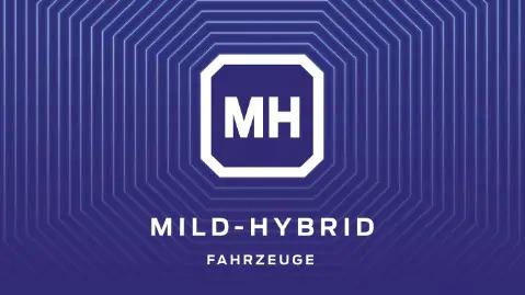 //gruenesautohaus.info/wp-content/uploads/2020/02/mild-hybrid.jpg